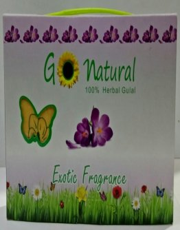 Go-Natural 100g  Briefcase Pack